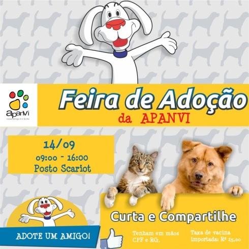 feira-adoção-animais