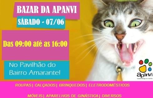 segundo-bazar-viva-gato
